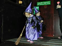 Halloween, York 2006