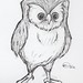 Owl 1.31.12