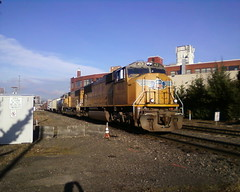 A Yellow Menace freight distracts me from my morning perambulations