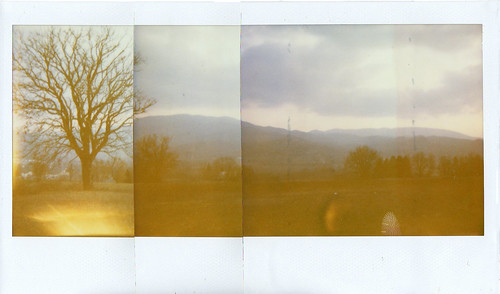 Panoramica Polaroid