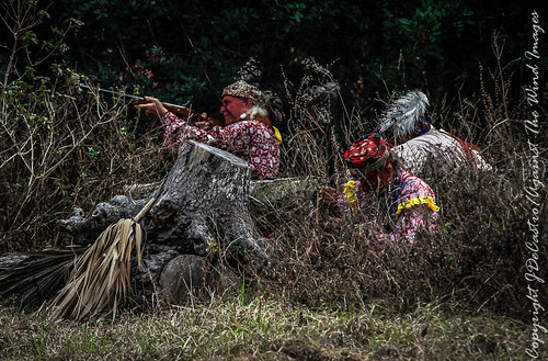 The Seminole's Hunker Down-4517 by Against The Wind Images