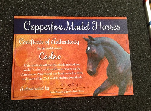 Copperfox Cadno unboxing