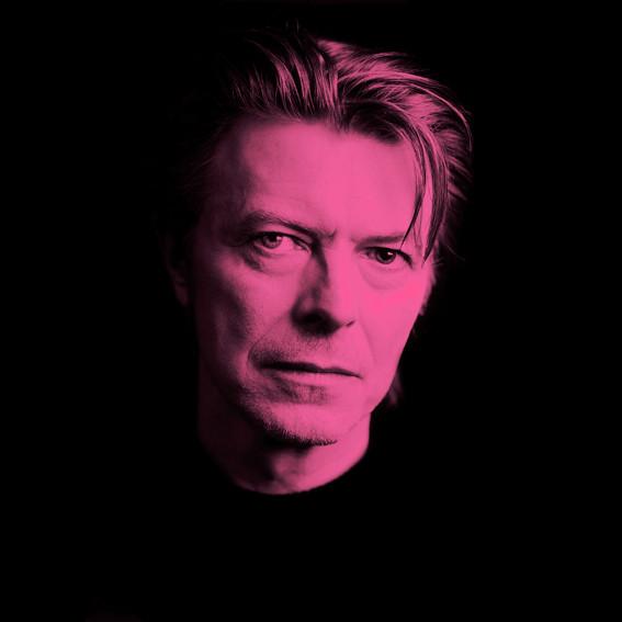 Pink David Bowie