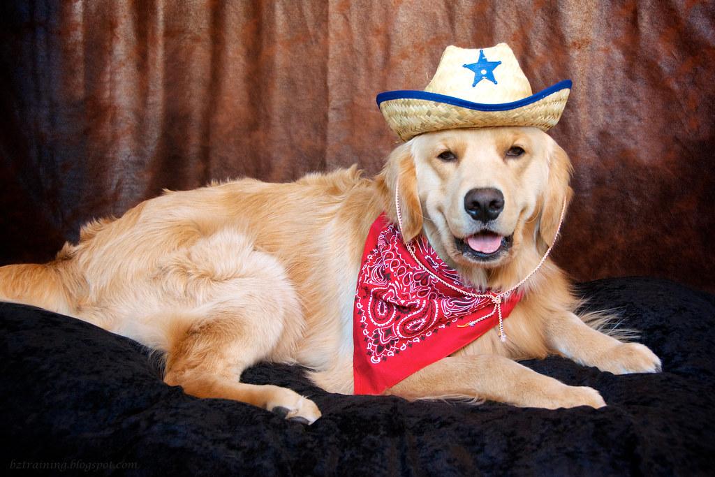 Sheriff Henry
