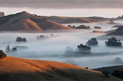 fog sunrise photography michael morninglight ryan sonoma petaluma sonomacounty goldenhills wilsonhill michaelryanphotography