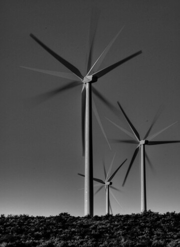 Wind Farm - B&W