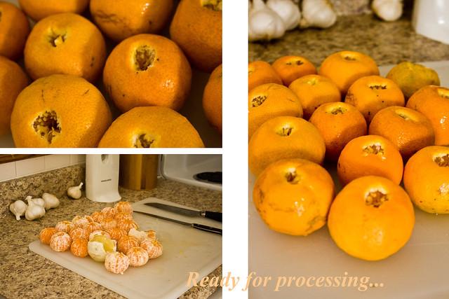 marmalade2
