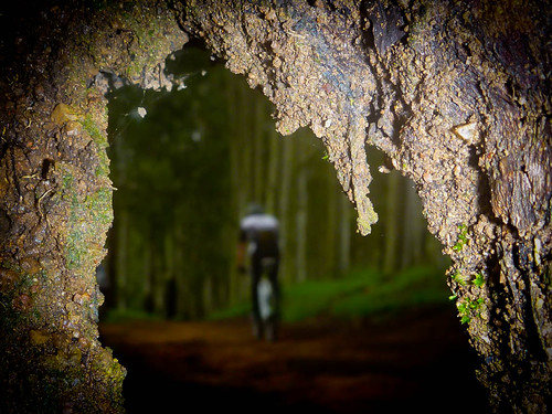 Pedal - Salto - Itu - Cabreuva