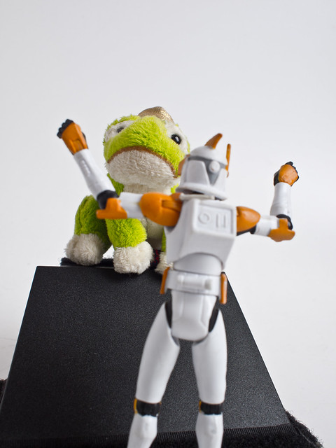 Projekt 52/2011, Woche 38: Froschperspektive