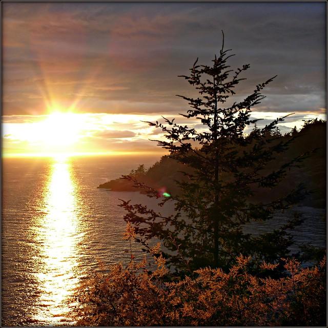Lime Kiln Point Sunset  sqfm