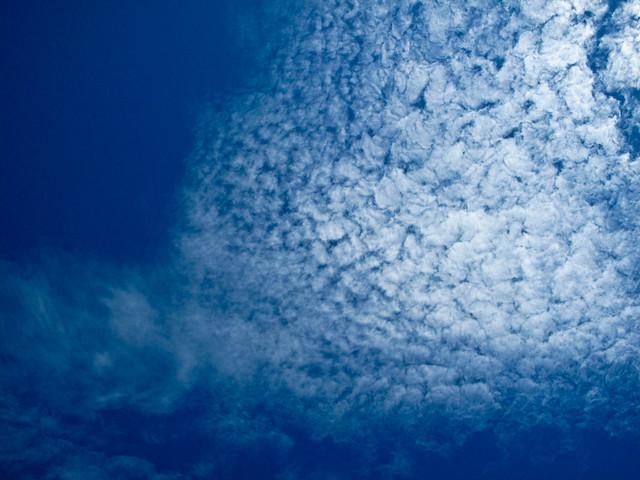 IMG_1947 Cloud, 云