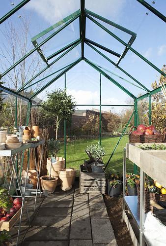 Eden Acorn Green Greenhouse Interior
