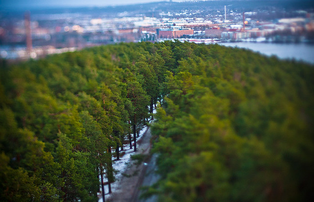 Nature of Tampere
