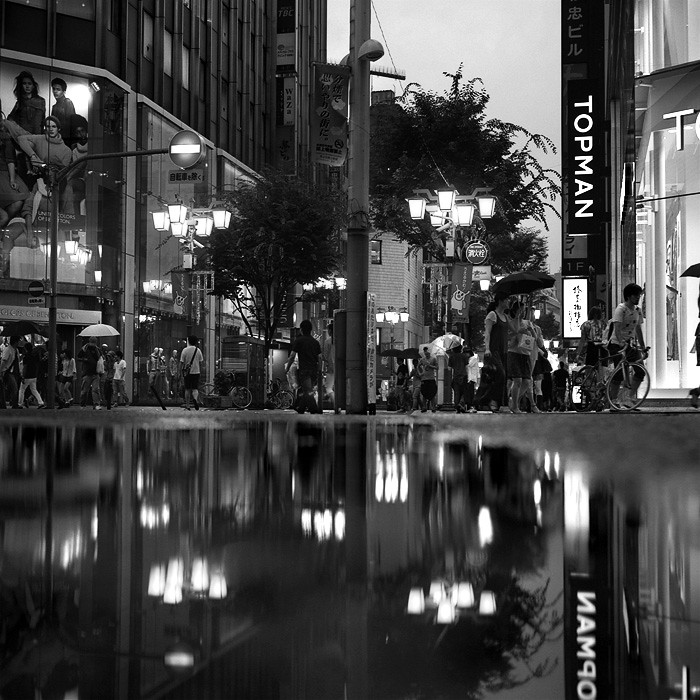 ariphoto2011_2_19