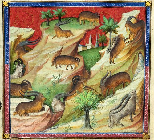 003-Le Livre de la chasse-1407- Gaston Phoebus- MS M. 1044 – fol 12-detalle-© The Morgan Library & Museum