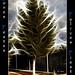 Mi árbol de Navidad... by camarasa62