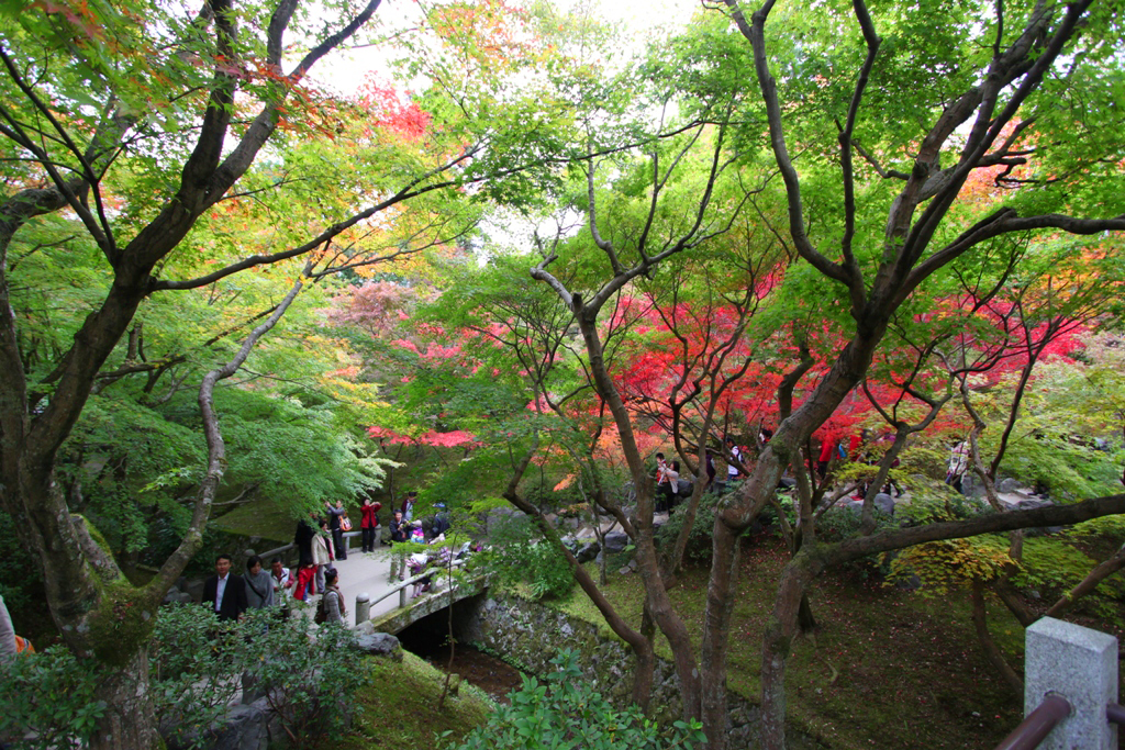 Kyoto Rakunan Guide (13)