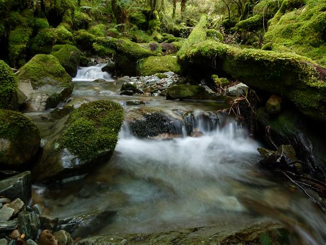 Blackball Creek, Paparoa Range, Westland, NZ