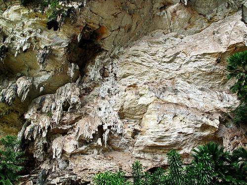IMG_0379 limestone,Kek Look Tong,Ipoh . 石灰岩 - 怡保极
