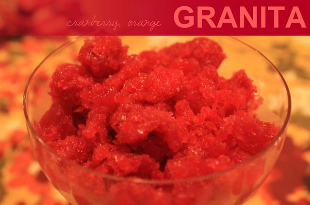 Julip Made: Cranberry Orange Granita