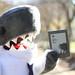 Ed Shark - Park with Kindle by Ed Shark