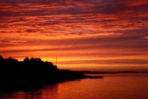 ocean trees light sunset sky nature water birds animals clouds landscape flora europe shadows view sweden silhouettes sverige kungsbacka halland särö jönköpingslän jönköpings canonxsi canon450dxsi runintherain