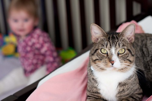 Vivi and her gaurdian cat.