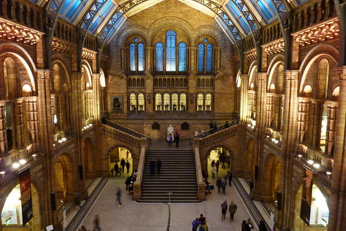 London January 2012 - Natural History Museum