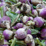 Piles of Turnips at Market in Alexandria, Egypt
