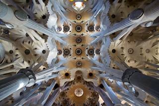 Ceiling of La Sagrada Família