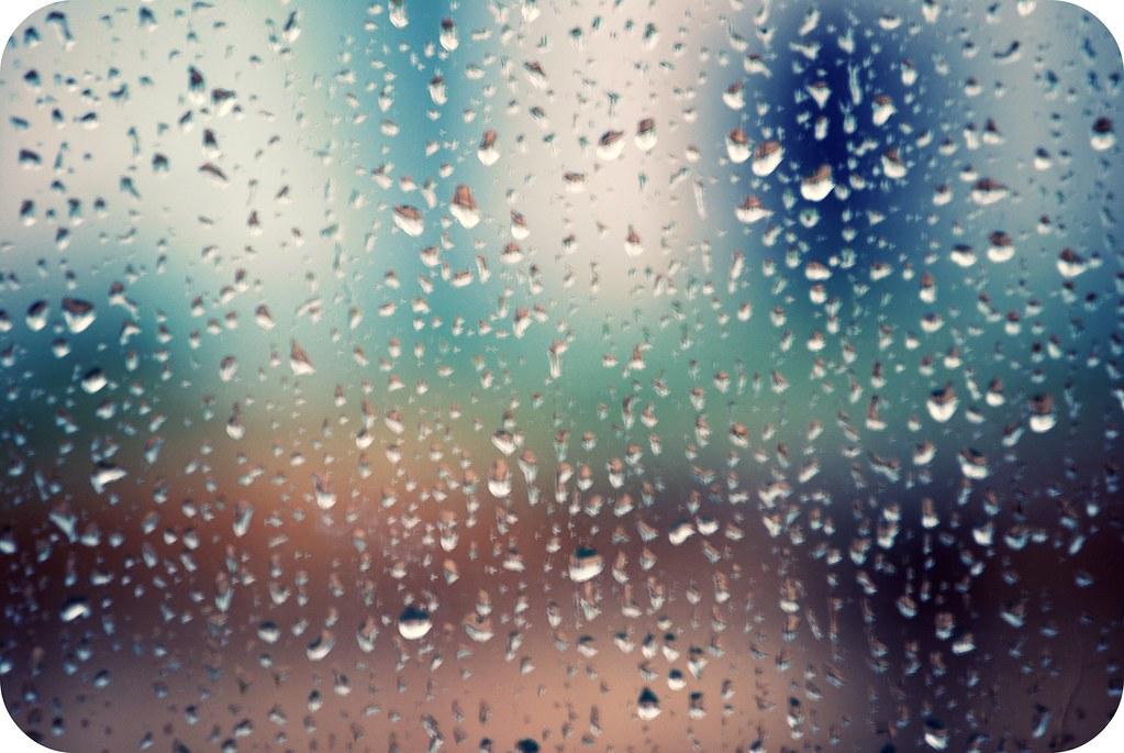 365 - Rainy day