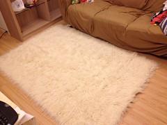 純羊毛長毛地毯