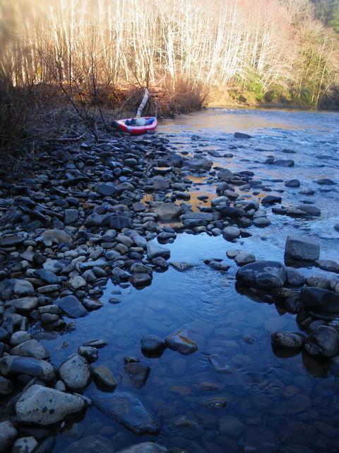 Nehalem river flickr photo sharing for Nehalem river fishing