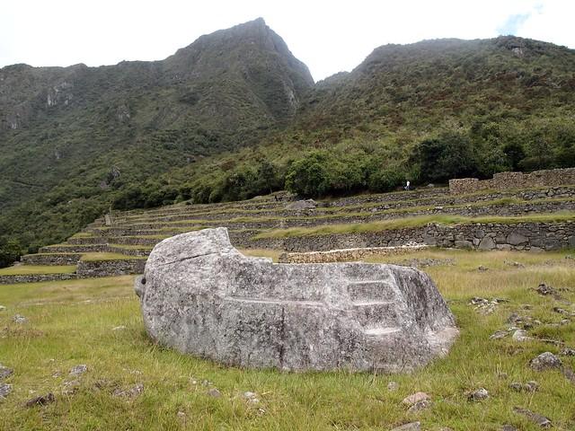 Machu Pichu-113