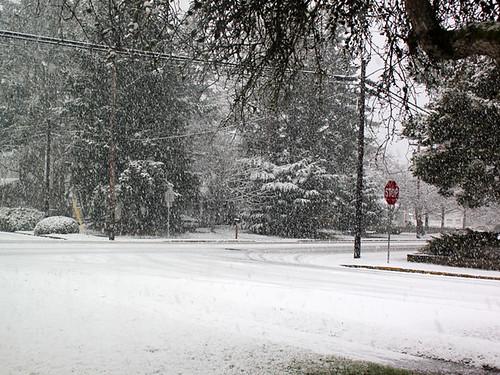 SnowDay2012-01
