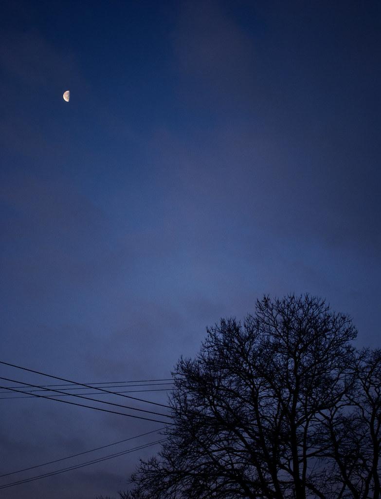 365-198 Dawn
