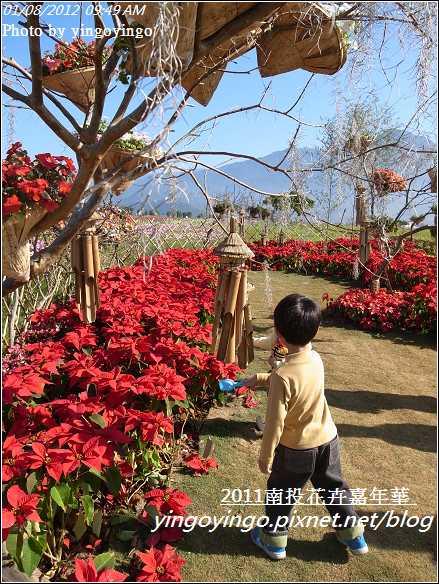 2011南投花卉嘉年華20120108_R0050259