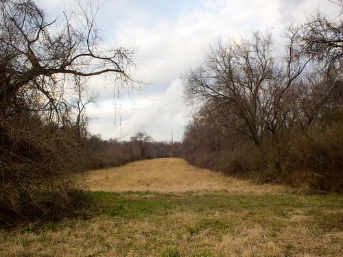 Dormant Field.