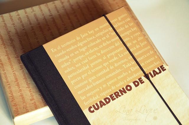 Cuaderno de viaje (III)