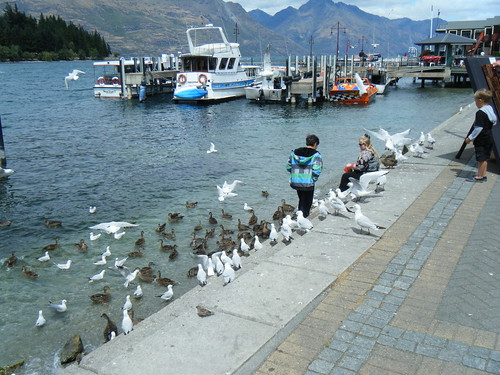 NZ 2012 049
