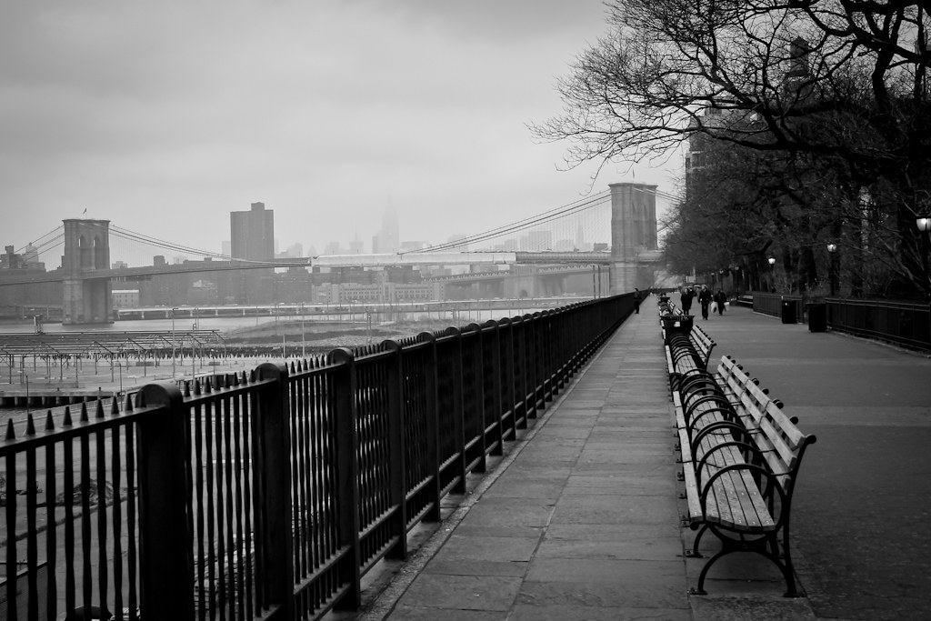 <Brooklyn Heights Promenade | Buildings of Manhattan, Brooklyn, New York | Travel Photography | Urban Photography