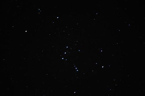 東勢林場-獵戶星座