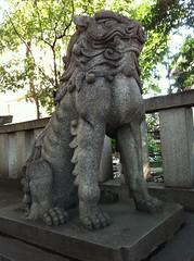 狛犬探訪 氷川神社