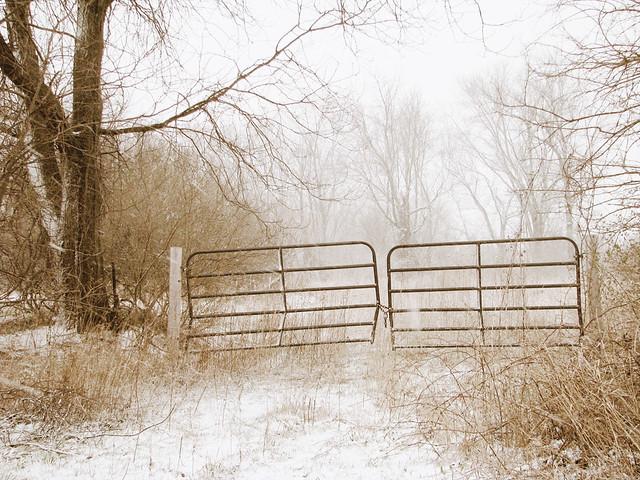 snowy_10
