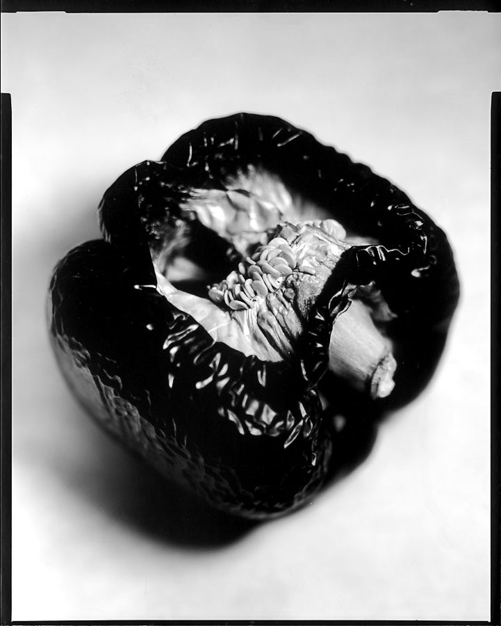 red pepper on paper negative