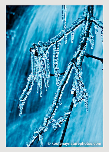 landscape bc icicles leachlake