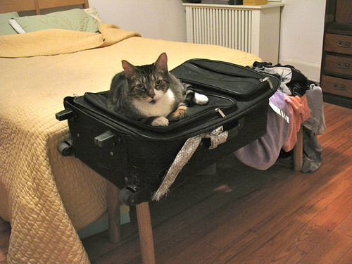 Why it takes so long to unpack after a trip!
