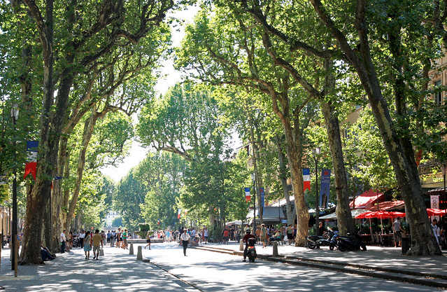 Aix En Provence Wine Bicycle Tours Day Trip