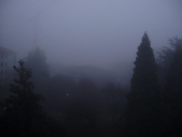 Nebbia_2