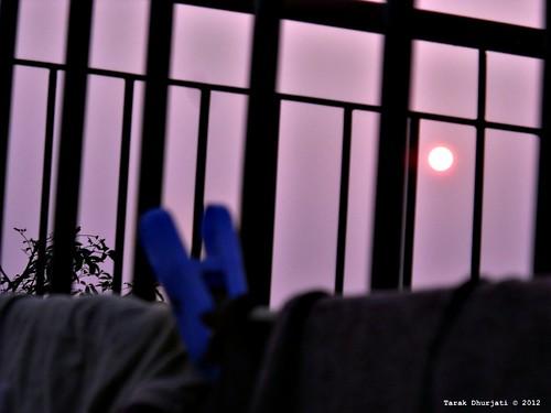 sunshine sunrise spot mind less happyvalentinesday itajruhd dhurjati poembyalexanderpope